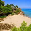 Stock Photo: Caldels Vienesos beach, in Miami Platja, Spain