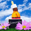 Stock Photo: homeopathy
