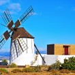 Windmill in Tiscamanita, Fuerteventura, Canary Islands, Spain — Stock Photo