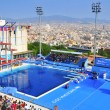 Stock Photo: 2013 World Aquatics Championships, in Barcelona, Spain