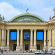 Grand Palais in Paris, France — Stock Photo #32205273