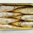 Canned sardines — Stock Photo