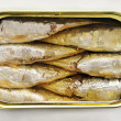 Canned sardines — Foto de Stock