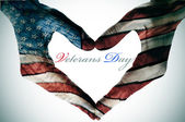 Veterans day — Foto Stock