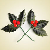 Artificial European Holly leaves with red berries — Stock Photo