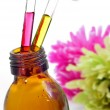 Stock Photo: Bach flower remedies