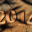 2014, as the new year — Stock Photo #35481309