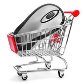 Computing mouse in a shopping cart, symolizing the online shoppi — Stock Photo