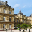 Luxembourg Palace in Paris, France — Stock Photo #37446977