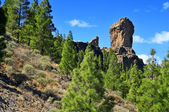 Roque Nublo monolith in Gran Canaria, Spain — Stock fotografie