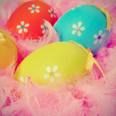 Easter eggs and feathers — Stock Photo