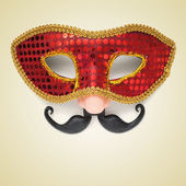 Carnival mask with fake nose and moustache — Stock Photo