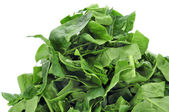 Chopped raw chard leaves — Stock Photo