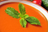 Spanish gazpacho — Stock Photo