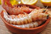 čerstvé syrové krevety — Stock fotografie