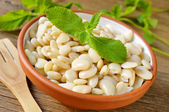 Cooked white beans — Stock Photo