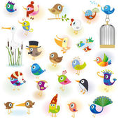 Birds set14 — Stock Vector