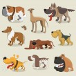 Cartoon dogs collection - Stock Vector