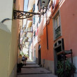 Street in village on Italian coast — Stock Photo #12428781
