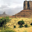 Monument Valley, Arizona — Stock Photo #21748225