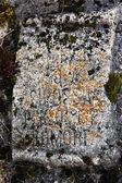 Vieja piedra — Foto de Stock