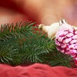 Christmas decoration — Stock Photo #29691323