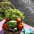 Vegetables and water jet — Stockfoto
