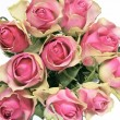 Bouquet of pink roses - Photo