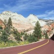 Foto Stock: Zion road