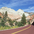 Stock Photo: Zion road
