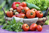 Some fresh vegetables — Stockfoto