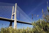 The famous Vasco da Gama bridge — Stock Photo
