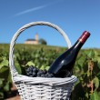 French wine — Stock Photo #17874903
