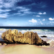 Rock of the beach — Stock Photo