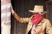 Bad wanted cowgirl — 图库照片
