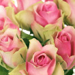 Stock Photo: Vertical roses