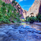 Rapids of the Virgin River — Stock Photo