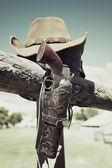 Cowboy gun — Stock Photo