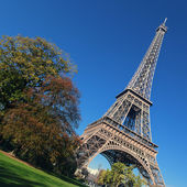 Eiffel Tower and trees — Stock Photo