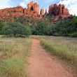 Stock Photo: Track to Cathedral Rock