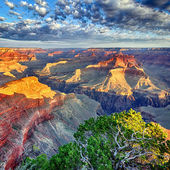 Morgenlicht am grand canyon — Stockfoto