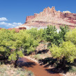The Castle in Capitol Reef National Park - Stock Photo