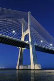 Vertical view of Vasco da Gama bridge by night — Stock Photo