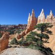 View of famous Navajo Trail — Stockfoto