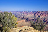 Famous Grand Canyon view — Stock Photo