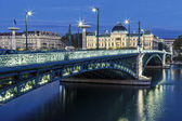 Famous bridge and University in Lyon — Stock Photo