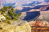 Horizontale weergave van beroemde grand canyon — Stockfoto