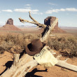 Stock Photo: Brown cowboy hat in front of Monument Valley