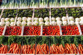 Verdure in supermercato — Foto Stock