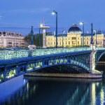 View of bridge and University in Lyon — Stock Photo